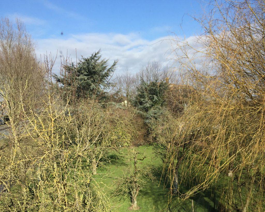 herstellen en moderniseren van boerenwoning
